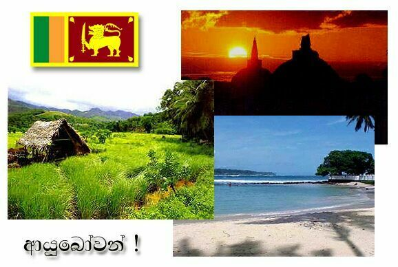 5 Nights 6 Days Glimps Of Sri Lanka Tour