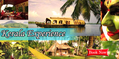 Kerala Tour Package (04 Night - 05 Days)