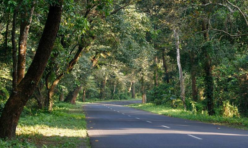 Lataguri With Alipurduar Tour (different Dooars)