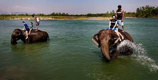 Tour Program With Chitwan 6 Days