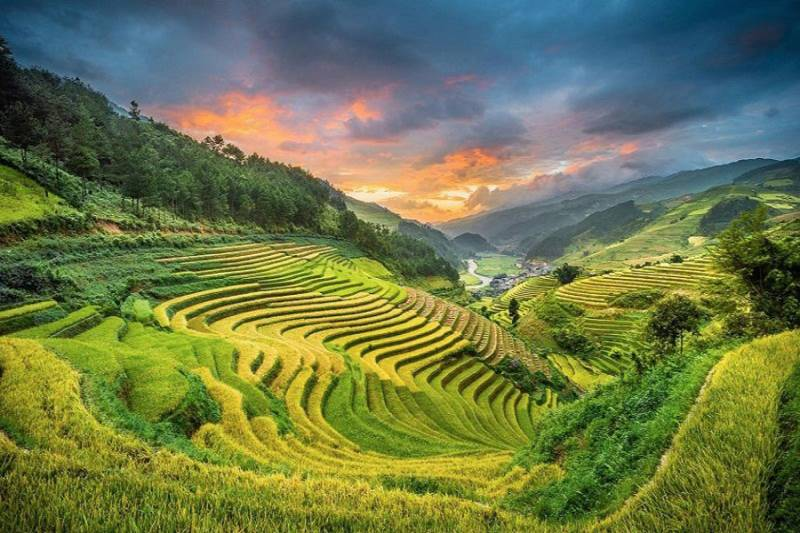 Sapa 3 Days 2 Nights Trekking Tour From Hanoi (2 Nights In Hotel)