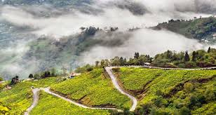 Exploring Darjeeling Tour 4 Days