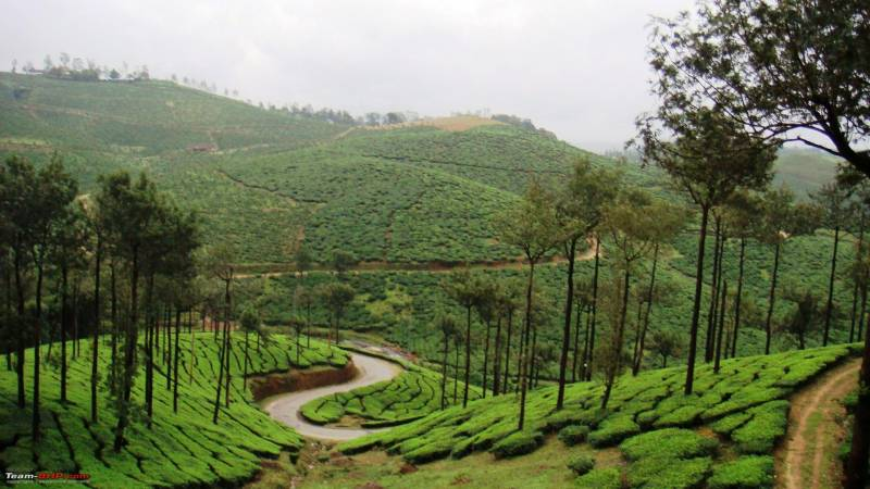 4 Nights 5 Days Bangalore Coorg Wayanad Tour