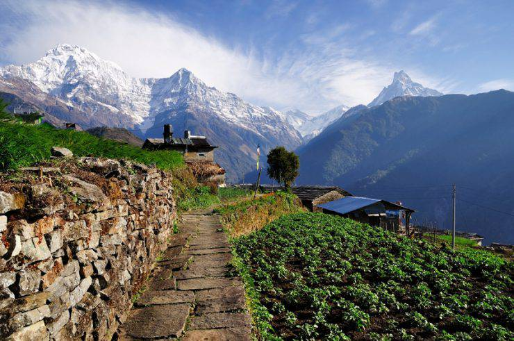 North India - Nepal Tour