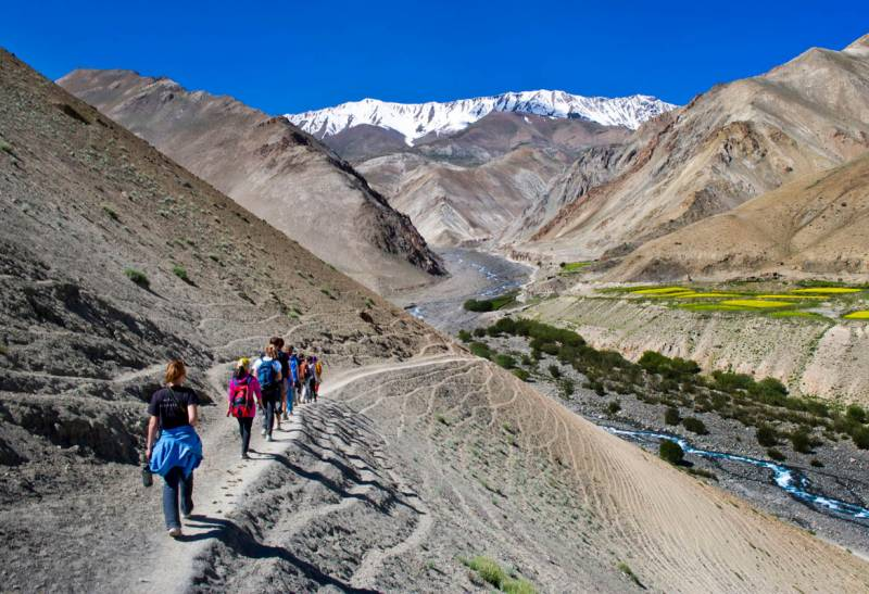 Zanskar - Ladakh Trek & Tour - 23 Days