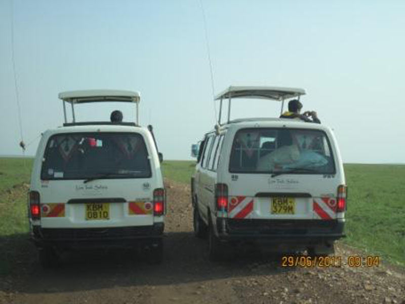 Magic Of Kenya Safari Tour