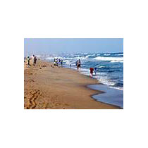 Tamilnadu - Karnataka - Pondicherry 8 Days Tour