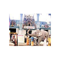 Spiritual Tour Of Tamil Nadu - Pondicherry 10 Days