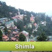 Delhi - Shimla - Delhi Tour