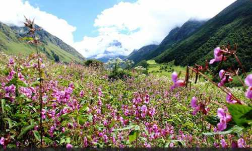 Hemkund Sahib Yatra Tour Packages