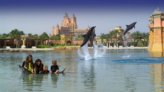 Best Of Dubai With Atlantis Tour
