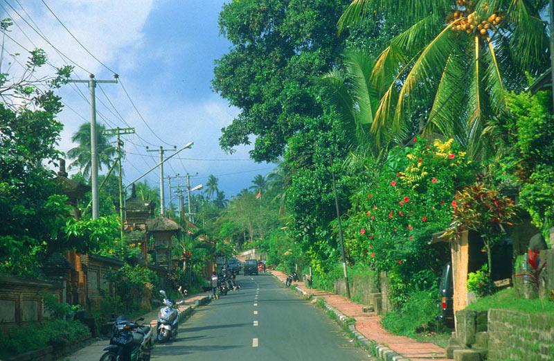 Dharamshala To Kullu Via Sari Pass Trek