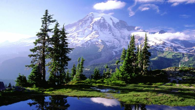Scenic Of North East - Sikkim Tour