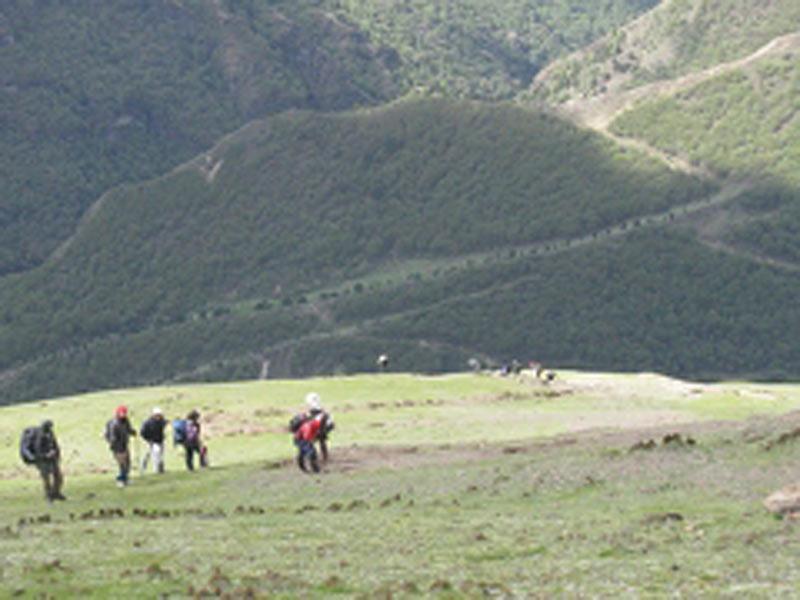 Jumolhari (Soi Yaktsa) Trek Tour