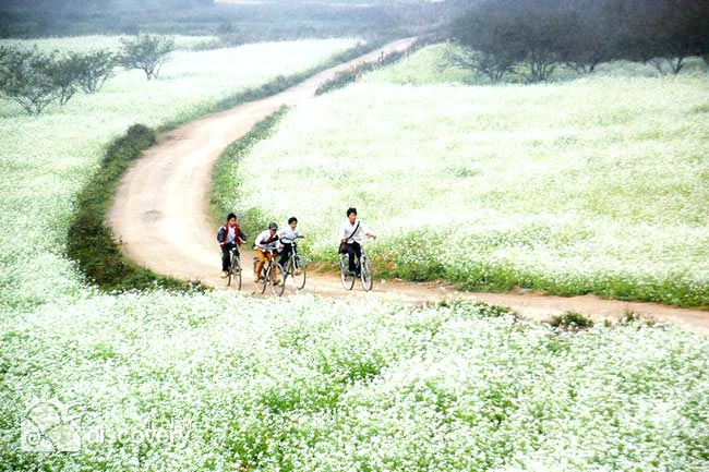 Mai Chau And Moc Chau Off Road Biking Tour 03 Days