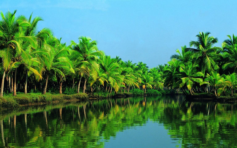 Kerala Honeymoon Special  With Private Vehicle