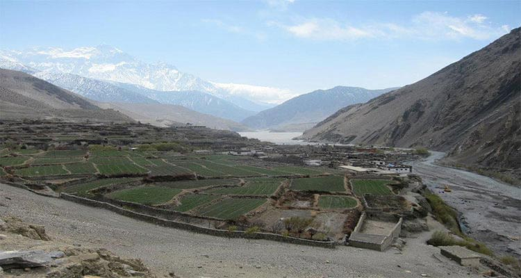 Trip Overview Of Jomsom Muktinath Trek Tour