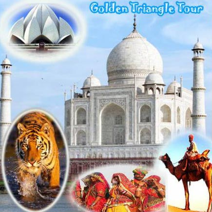 Golden Triangle With Wildlife Tour