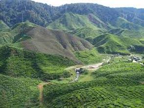 Uttarakhand Tours Mukteshwar (2) - Kausani (2) - Ranikhet (1)