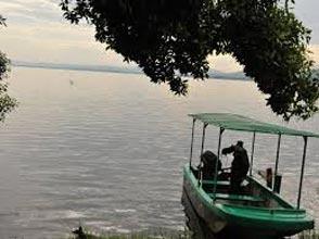 8 Days Uganda Safari Lake Mburo, Bwindi Gorilla Forest, Queen And Kibale National Parks Tour