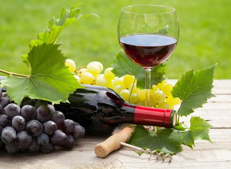 Wine Lovers Tour