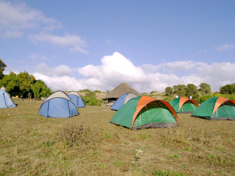 Trekking Tours - Bale National Mountain
