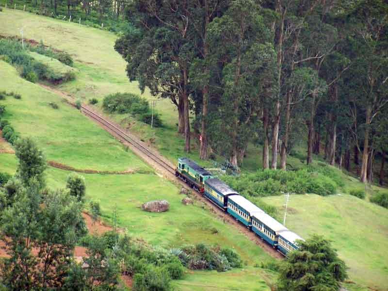 South India Honeymoon Tour