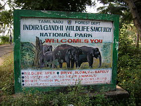 Assam Wildlife Tour 3N / 4 D