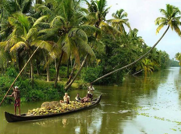 Authentic Kerala Package