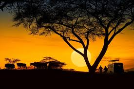 3 Days Luxury Wildlife Safari In Amboseli National Park, Kenya Tour