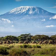 7 Days Maasai Mara, Lake Nakuru, Lake Naivasha, And Amboseli Best Experience Safari In Kenya Tour