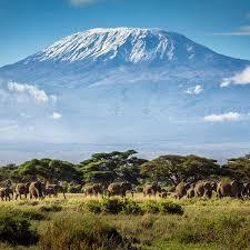 7 Days Maasai Mara, Lake Nakuru, Lake Naivasha, And Amboseli Best Experience Safari In Kenya Tour