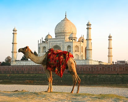 Agra – Amritsar- Delhi Tour (4 Night/5 Days)