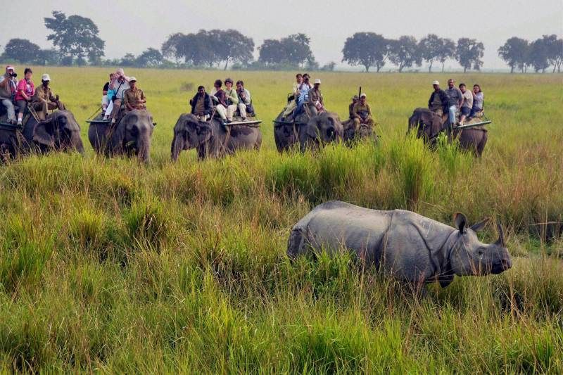 5 Nights 6 Days Guwahati, Manas And Kaziranga Tour