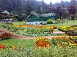 2 Nights Ooty Tour Package