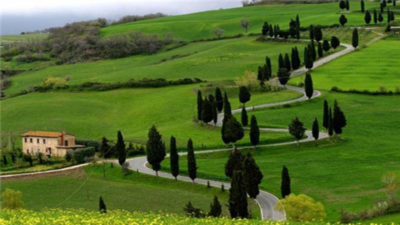 1 Night Ooty Package Ex Coimbatore Tour