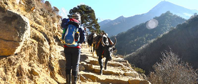 Everest Base Camp Trek | 13 Days Everest Base Camp Trek Tour