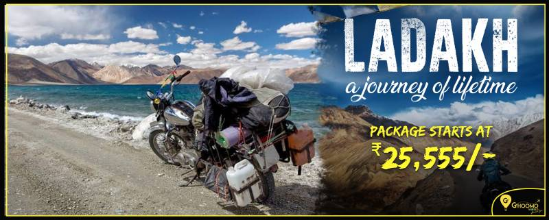 Ladakh A Journey Of Lifeline