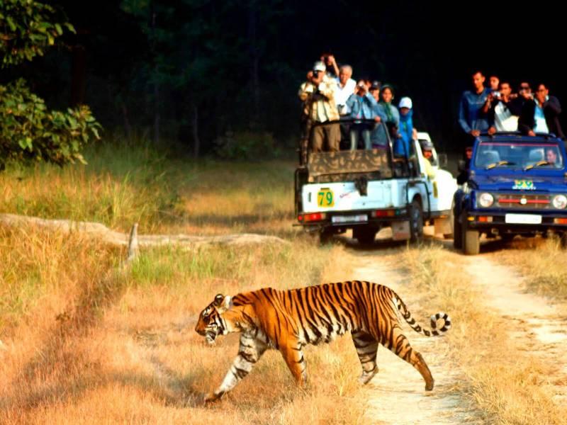 Nainital, Ranikhet & Jim Corbett Trip Tour