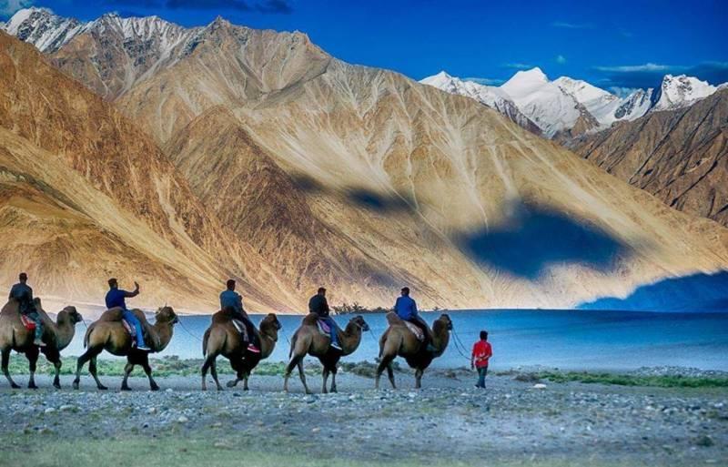 Leh -Ladakh (6 Nights 7 Days) :Leh (4N), Nubra Valley (1N), Pangong (1N) Tour