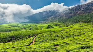 Kerala Tour Package 7 Days
