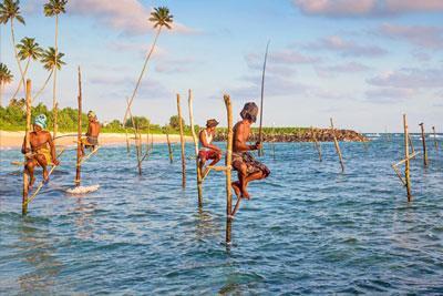 Srilanka Tour Packege