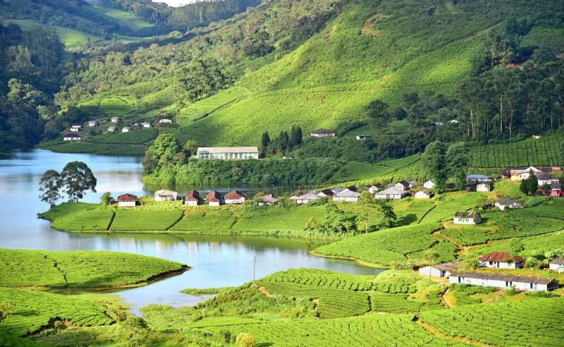 05 Nights / 06 Days Munnar Thekkady Alleppey Tour