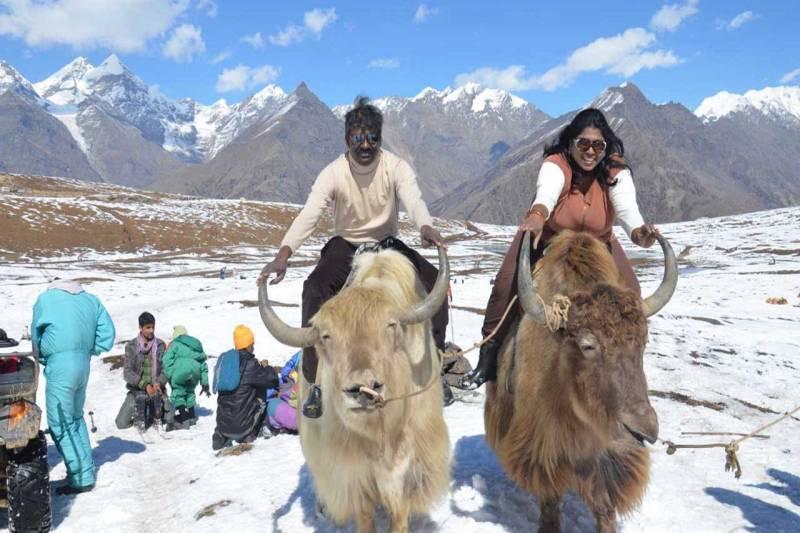 New Delhi To Shimla Tour