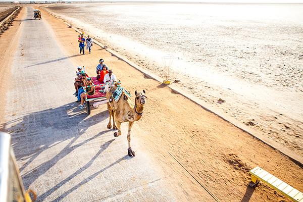 Kutch Port Desert And Beach Trip