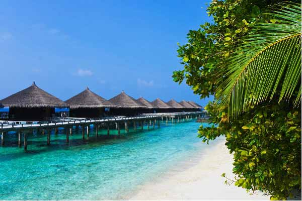 7 Days North Middle And South Andaman Tour
