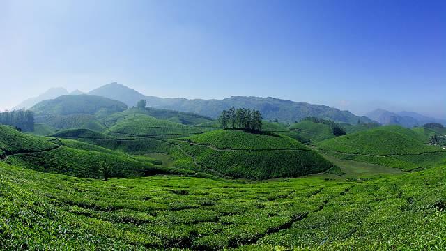 4N/5D Explore Kerala Tour