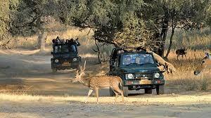 Ranthambhore National Park Tour