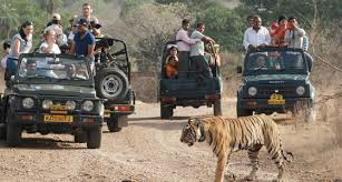 Ranthambore Weekend Trip Tour