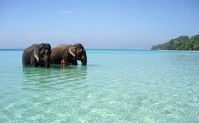 Port Blair Tour 5 Days